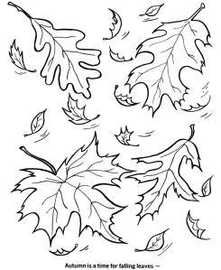e014f6ad5d46f48264e0f7e990f72caa--fall-coloring-pages-coloring-sheets