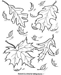e014f6ad5d46f48264e0f7e990f72caa--fall-coloring-pages-coloring-sheets